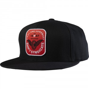 FLYING TIRE SNAPBACK HAT